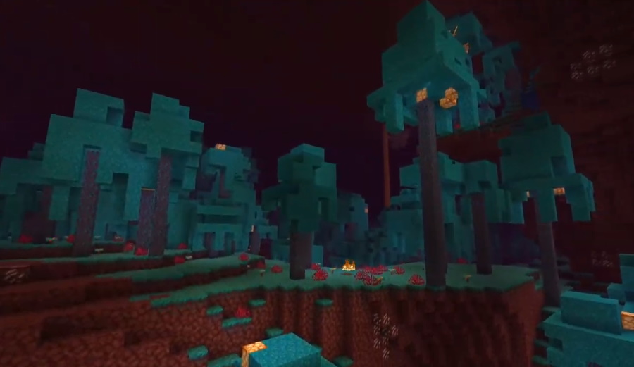 Netherwart Forest Minecraft