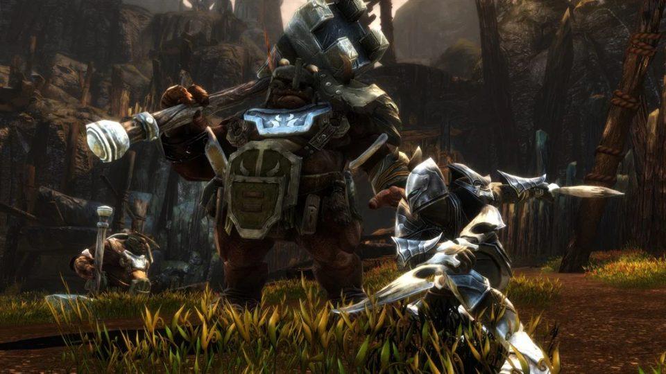 Kingdoms of Amalur: Re-Reckoning Screenshoot 4