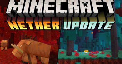 Minecraft: Nether Update