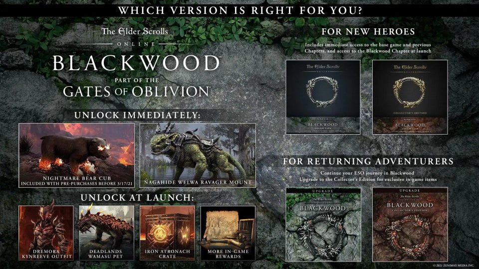 The Elder Scrolls Online: Blackwood disponibile l'1 Giugno su PC e Stadia, 8 Giugno su PS4 e Xbox One 4